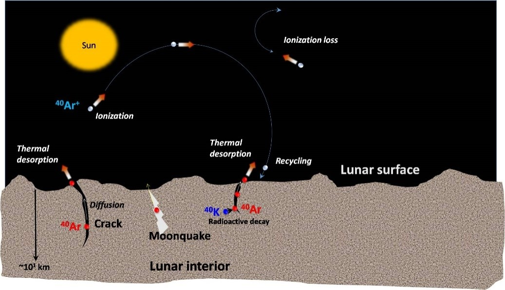 Schematic of the origin and dynamics of 40Ar in lunar exosphere