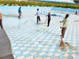 Cleaning of water body at SCL