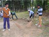 Clearance of bushes from office premises SCL