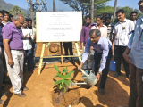 TREE PLANTATION DRIVE AT IPRC MAHENDRAGIRI LEAD BY DIRECTOR, IPRC